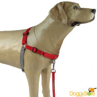 Peitoral Easy Walk K9 Spirit