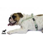Peitoral Estampado Don Dog - Terra da Garoa