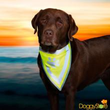 Bandana de Segurança para Cachorro com Tiras e Patinha Refletivas