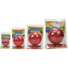 Petball - Brinquedo Interativo