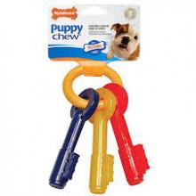 Chaves mordedoras Nylabone Puppy Chew - Nylabone