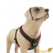 Cinto de Segurança para Cães Cachorro - K9 Spirit