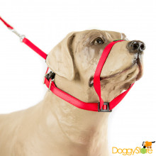 Coleira K9 Collar (tipo Canny Collar) Anti-Puxão